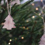 Navidad en Froggies